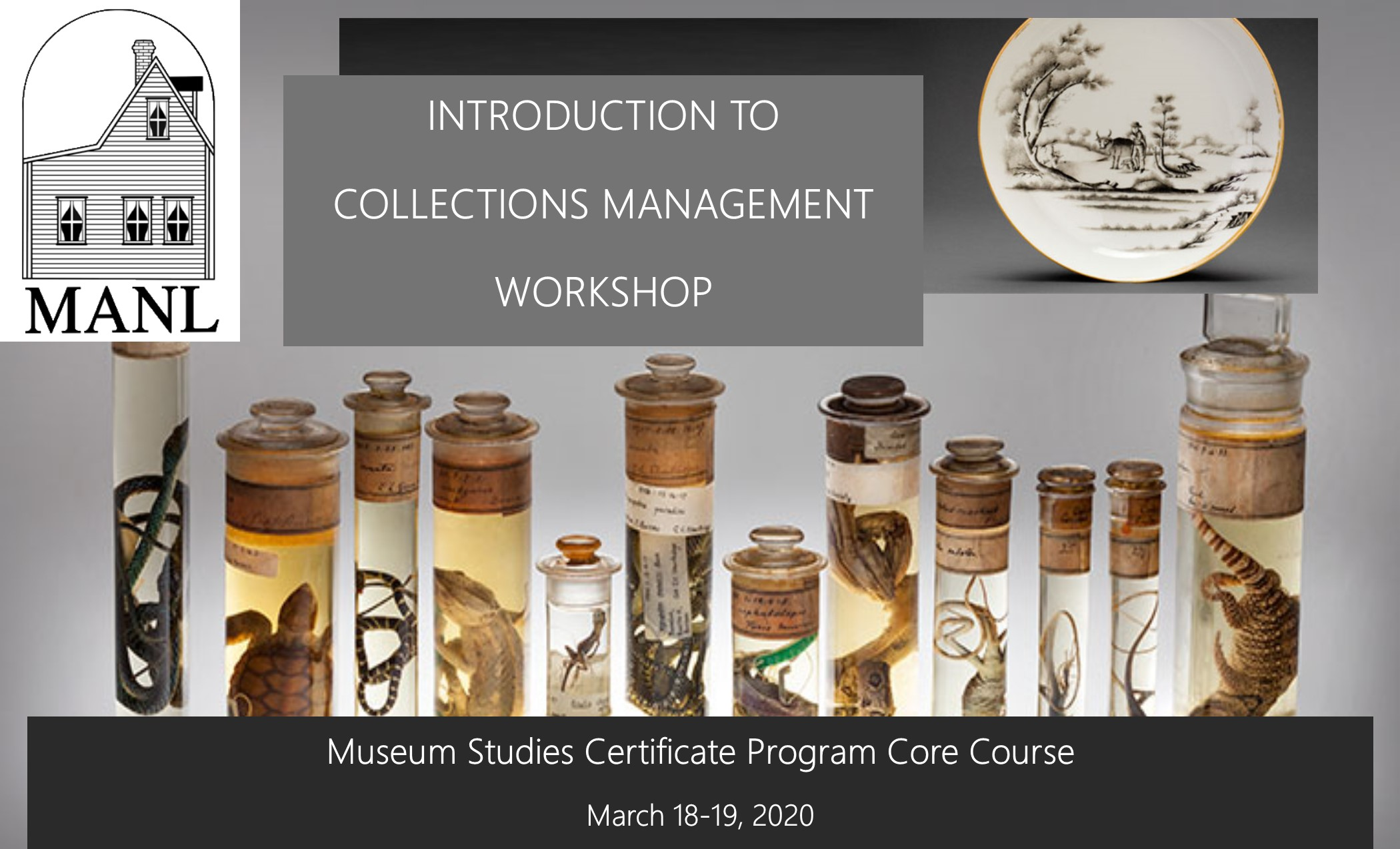 collections workshop